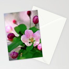 Crabapple flowers and buds. Outburst of life Stationery Cards