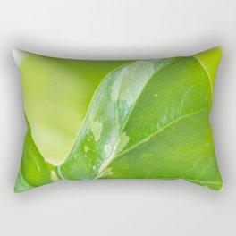 Alocasia Albo Variegata Variegated Leaf Rectangular Pillow