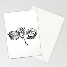 Rowan Branch Stationery Cards