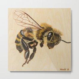 Bee VII (Artemesia) Metal Print