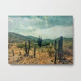 Arubian Desert Metal Print