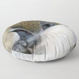 Wild Cute Vervet Monkey Portrait Floor Pillow