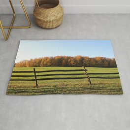 Knox Park Leaning Fence Rug
