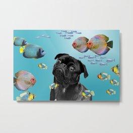 Tropic Fishes with Pug Dog Metal Print