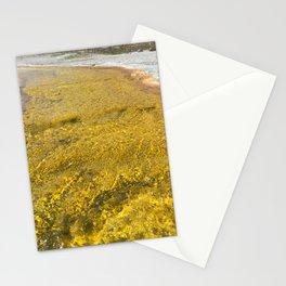Liquid Gold II Stationery Cards
