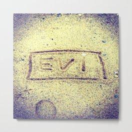 Evi Metal Print