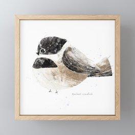 Black Capped Chickadee Bird Illustration   Framed Mini Art Print