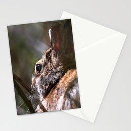 Sunshine Rabbit Stationery Cards