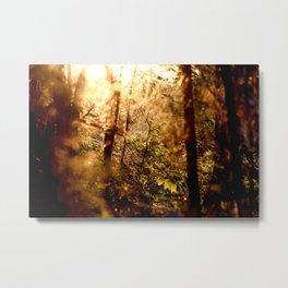 I Struck Gold on Autumn Hill Metal Print