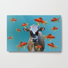 Goldfishes with Costa Rica Cow Metal Print