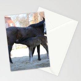 Pferde Stationery Cards
