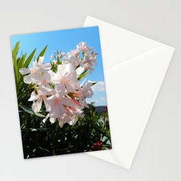 Summer flower Stationery Cards