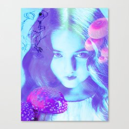 Alice in Wonderland Composite- Feed Your Head Canvas Print