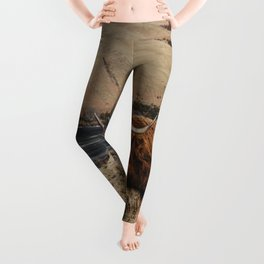 Scottish highland cattle vintage portrait landscap Leggings