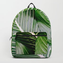Big Leaves - Tropical Nature Photography Backpack