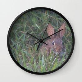 Rabbit in the Grass Wall Clock