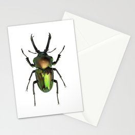 Rainbow Stag Beetle Stationery Cards
