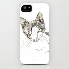Humphrey the cat iPhone Case