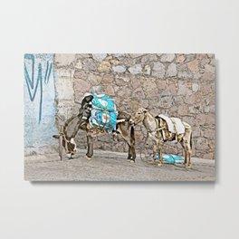 Donkeys in Guanajuato, Mexico Metal Print