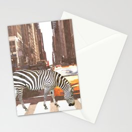 Zebra in New York City Stationery Cards