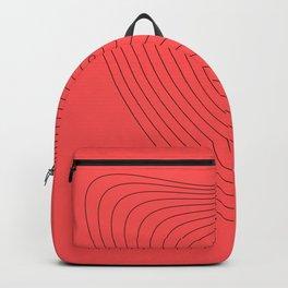 Figure 2 Backpack