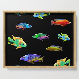 African Cichlid School Aquarium Fish Lovers Serving Tray