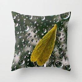 Rain on Window Throw Pillow