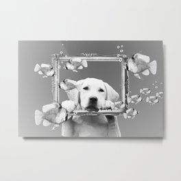 Golden Retriever Dog Tropical Fishes Frame - black & white Metal Print