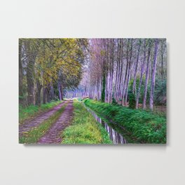 Country road close to an irrigation ditch Metal Print