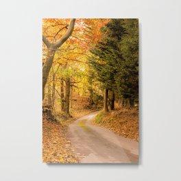 Autumnal color Metal Print