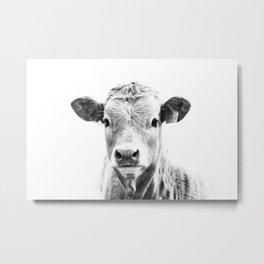bw cow, southwest decor, farmhouse photography, rustic decor Metal Print