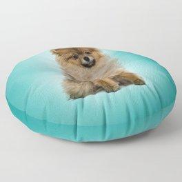 Cute Pomeranian Dog Floor Pillow