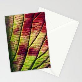 leaf detail Stationery Cards