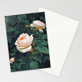 Dark Garden Stationery Cards