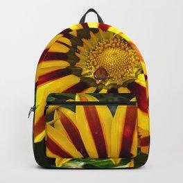Striking Petals Backpack