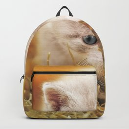 Kitten | Chaton Backpack