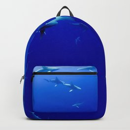 Circling Backpack