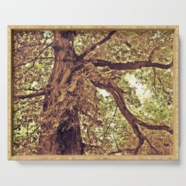 Tree of love Serving Tray