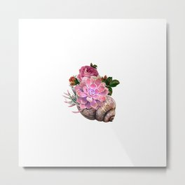 shellfish and pink cactus with floral rose Metal Print