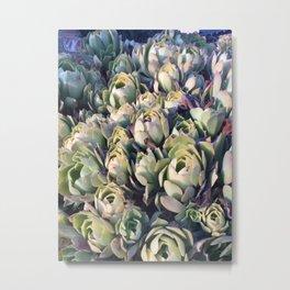Succulent Flowers Metal Print