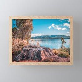 Lake Te Anau with big tree stump on the foreground, Fiordland, South Island, New Zealand Framed Mini Art Print