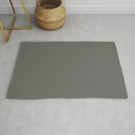 BM Kendall Charcoal Gray HC-166 - Trending Color 2019 - Solid Color Rug