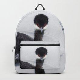 Eared Grebe Backpack