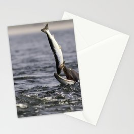 Salmon feast Stationery Cards