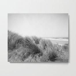 "STINSON AMMOPHILIA - ILFORD FP4+ - (4x5"" film) Metal Print"