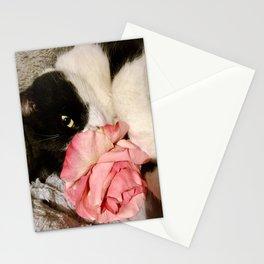 Sweet Orazio Stationery Cards