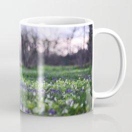 Late Winter Blooms Coffee Mug