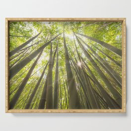 Sun shining through a bamboo forest Serving Tray