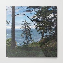 Northern California Coast Metal Print