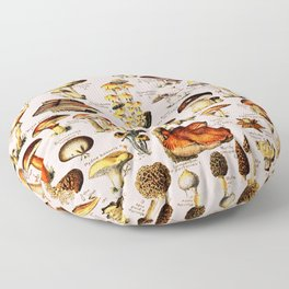 French Vintage Pink Mushrooms Chart Adolphe Millot Champignons Larousse Pour Tous Poster Floor Pillow